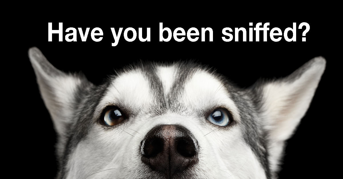 Non-discrimination testing - Were you sniffed this year?