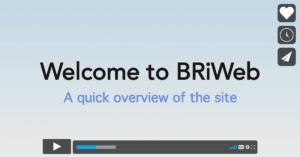 BRiWeb overview