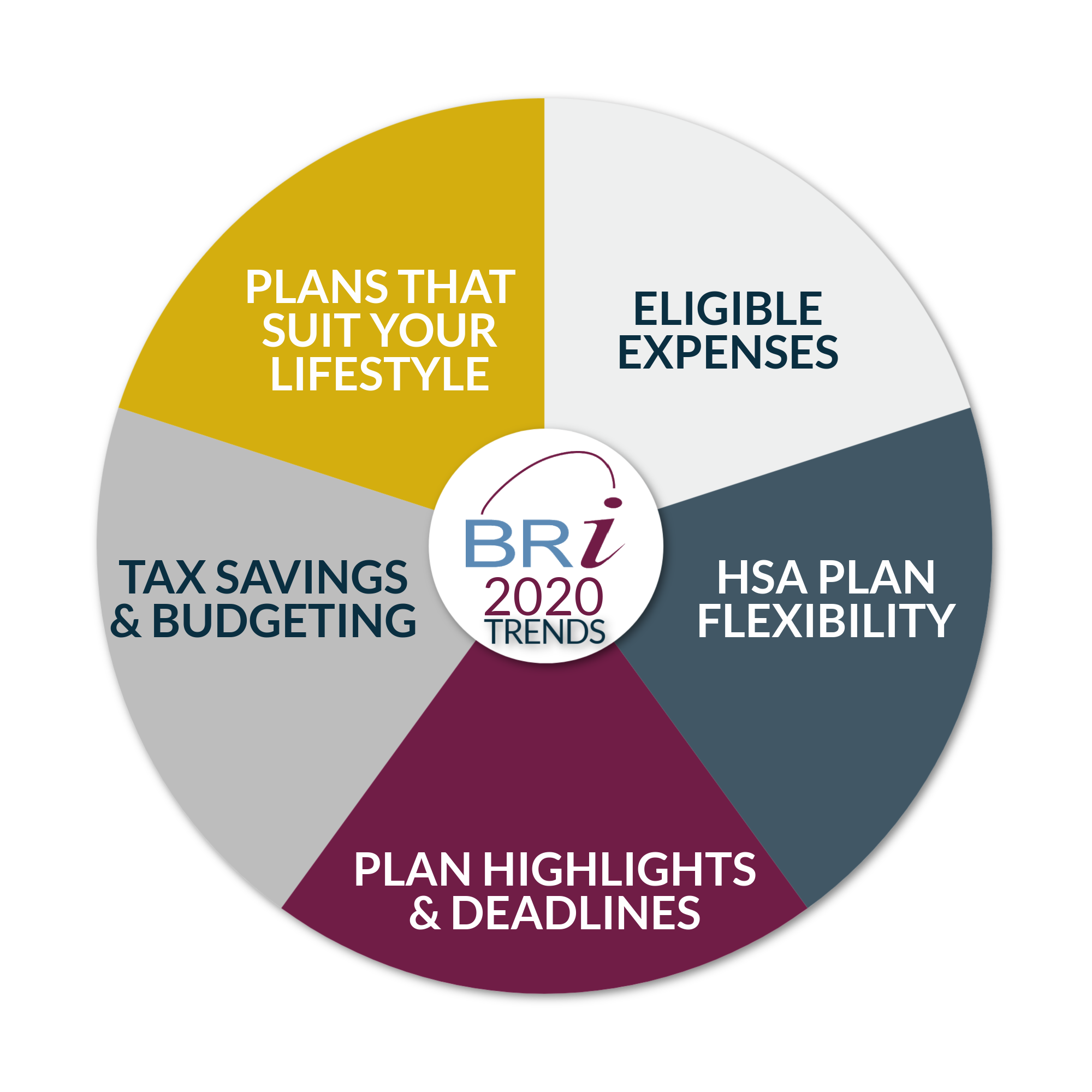 BRI financial wellness wheel